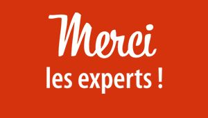 Logo Merci Les Experts