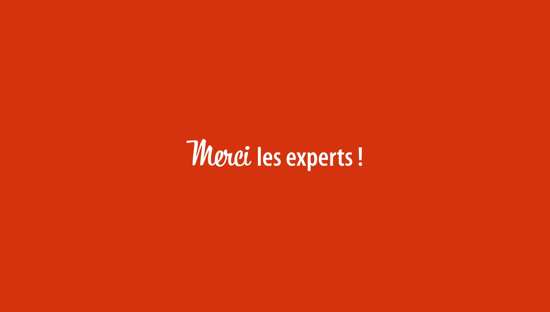 Merci Les Experts